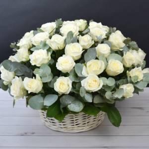Корзина 35 крупных белых роз с зеленью R487